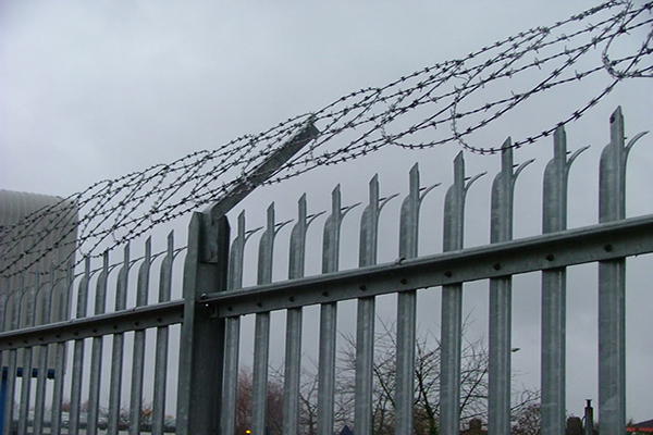 D Type Palisade Fence
